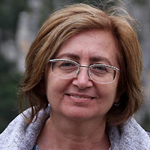 Angela Barenholtz
